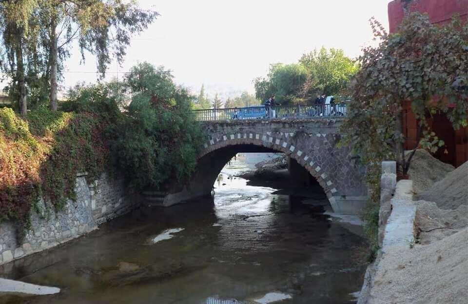 bridge-fin